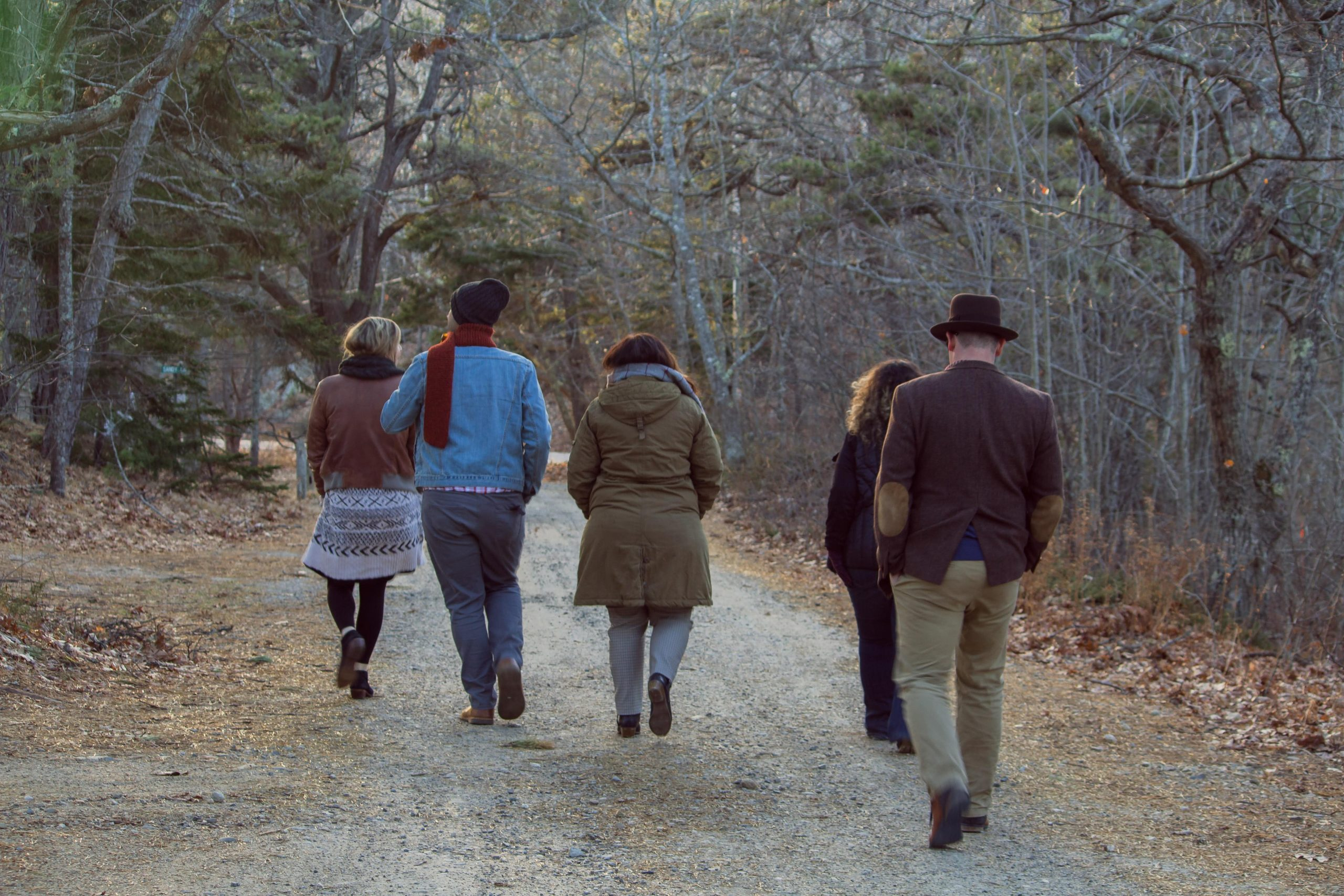 Image of the back of a group of five people, walking through the woods in winter.