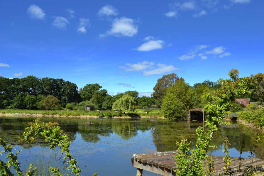 Holly Cottage Devon - Fishing Lake - Little Dunley Cottages